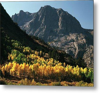 Usa, California, Sierra Nevada Metal Print by Christopher Talbot Frank