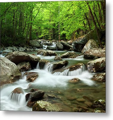 Usa, Tennessee, Great Smoky Mountains Metal Print by Ann Collins