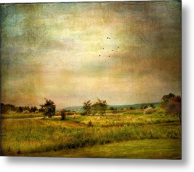 Vintage Valley View Metal Print by Jessica Jenney