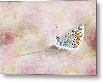 Butterfly Metal Print by Heike Hultsch