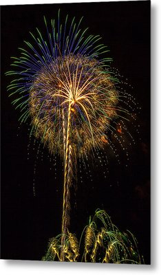 4th July #13 Metal Print by Diana Powell