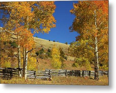 Autumn Cedar Mountain Utah Metal Print