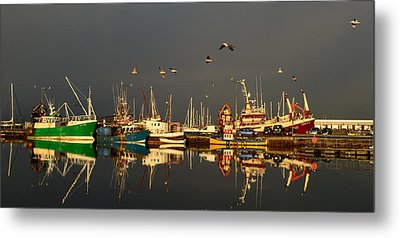 Dingle Harbor Metal Print by Barbara Walsh