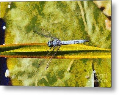 Dragonfly Metal Print by George Atsametakis