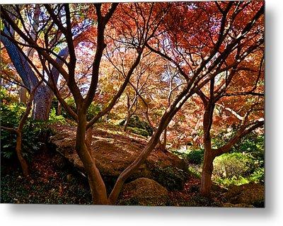 Metal Print featuring the photograph Japanese Gardens by Ricardo J Ruiz de Porras