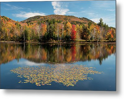 Reflection Of Trees On Water Metal Print