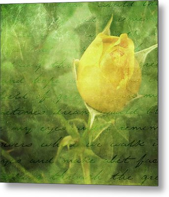 Yellow Rose Metal Print by Cathie Tyler