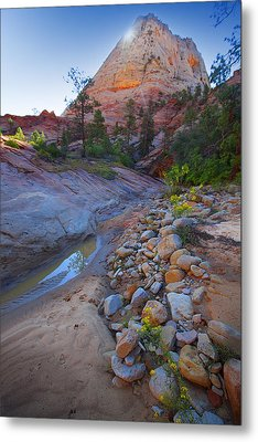 Metal Print featuring the photograph Zion National Park Utah Usa by Richard Wiggins