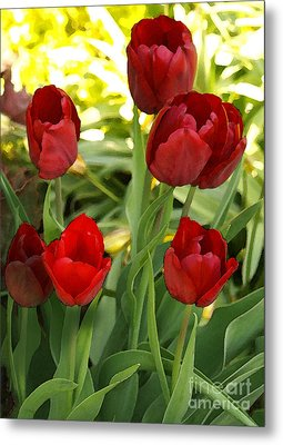 Metal Print featuring the photograph 5tulips by Susan Crossman Buscho