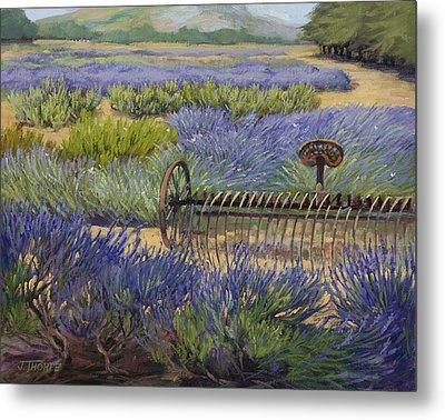 Edge Of The Lavender Field Metal Print