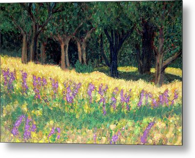 Texas Gold Metal Print by Carolyn Donnell