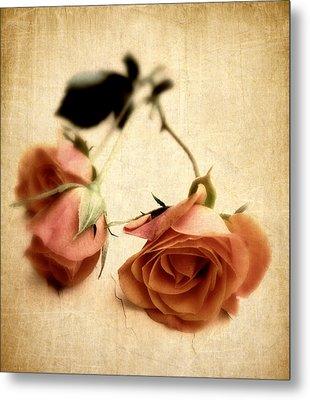 Vintage Rose Metal Print by Jessica Jenney