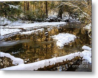 Winter Along Cranberry River Metal Print by Thomas R Fletcher