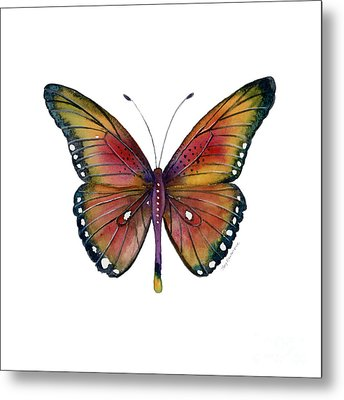 66 Spotted Wing Butterfly Metal Print