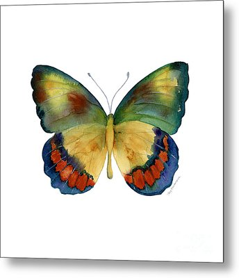 67 Bagoe Butterfly Metal Print by Amy Kirkpatrick