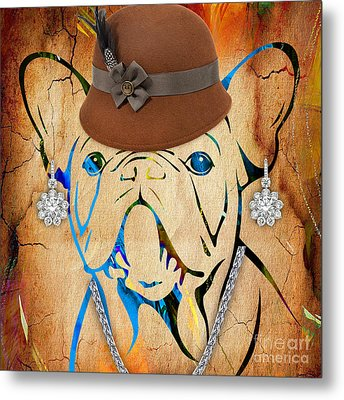 French Bulldog Collection Metal Print by Marvin Blaine