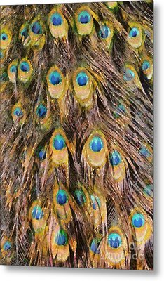 Tail Feathers Of Peacock Metal Print by George Atsametakis