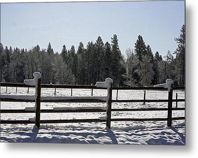 The Bitterroot Valley  Metal Print by Larry Stolle