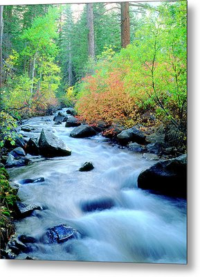 Usa, California, Sierra Nevada Metal Print by Jaynes Gallery