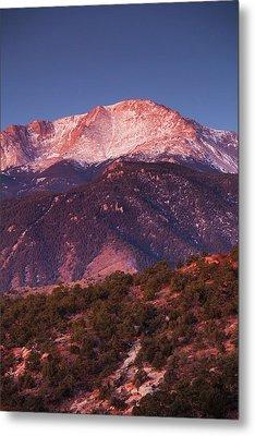 Usa, Colorado, Colorado Springs, Garden Metal Print