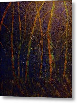Earth Light Series Metal Print by Len Sodenkamp