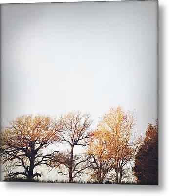 Autumn Metal Print by Les Cunliffe