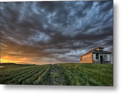 Newly Planted Crop Metal Print by Mark Duffy