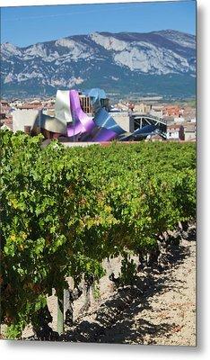 Spain, Basque Country Region, La Rioja Metal Print by Walter Bibikow
