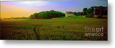 Conley Rd Spring Pasture Oaks And Barn  Metal Print