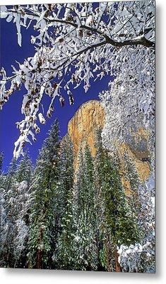 Usa, California, Yosemite National Park Metal Print by Jaynes Gallery