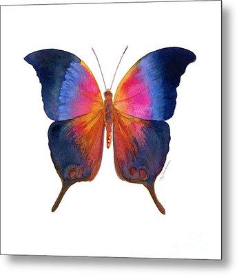96 Brushfoot Butterfly Metal Print