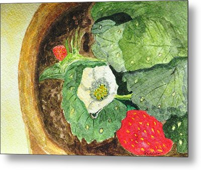 Metal Print featuring the painting A Balcony Strawberry Plant by Angela Davies