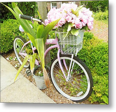 Metal Print featuring the photograph A Basket Of Peonies by Rosemary Aubut