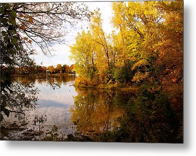 A Beautiful Day Metal Print by Jocelyne Choquette