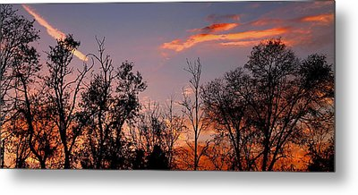 Metal Print featuring the photograph A Beautiful Ending by Candice Trimble