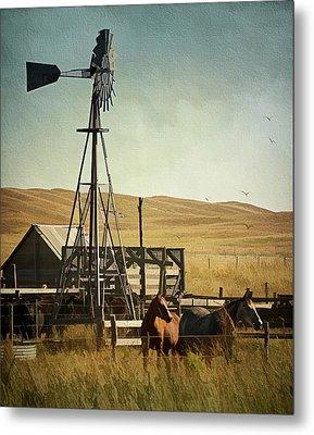 A Beautiful Nebraska Sandhills Farm Metal Print by Priscilla Burgers