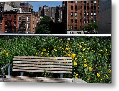 A Bench On The High Line In New York City Metal Print by Diane Lent