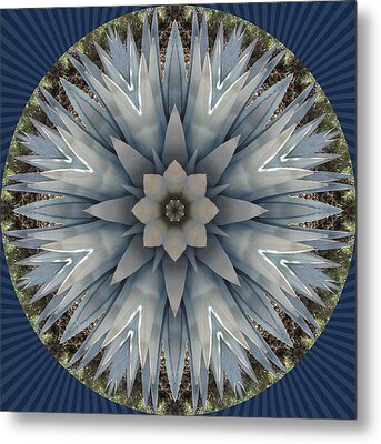 A Blue Agave Metal Print by Trina Stephenson