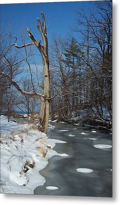 A Bright January Day By A Stream Metal Print