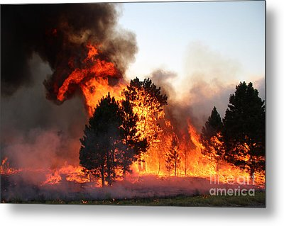 A Burst Of Flames From The White Draw Fire Metal Print by Bill Gabbert
