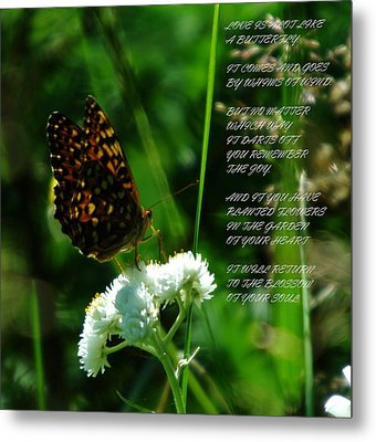 A Butterfly Poem About Love Metal Print by Jeff Swan
