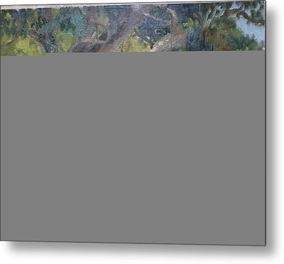 A Coramandel Stream Metal Print by Terry Perham
