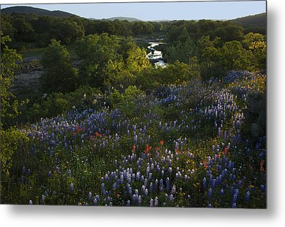 Metal Print featuring the photograph A Creek In Llano County  by Susan Rovira