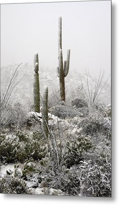 A Desert Snow Day  Metal Print by Saija  Lehtonen