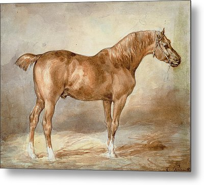 A Docked Chestnut Horse Metal Print by Theodore Gericault
