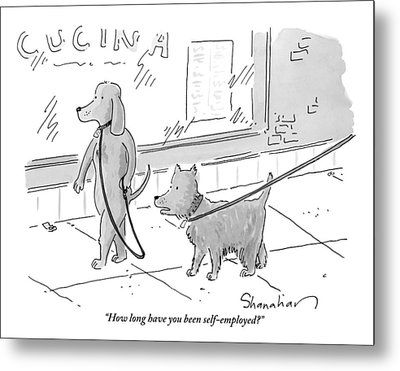 A Dog Being Walked On A Leash Asks A Dog Who Metal Print by Danny Shanahan