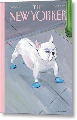 A Dog Wears Shoes On The City Sidewalk Metal Print