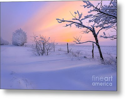 A Drift Metal Print