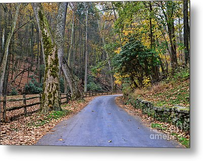 A Drive In The Country Metal Print by Paul Ward