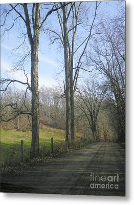 A Drive In The Country Metal Print by R A W M